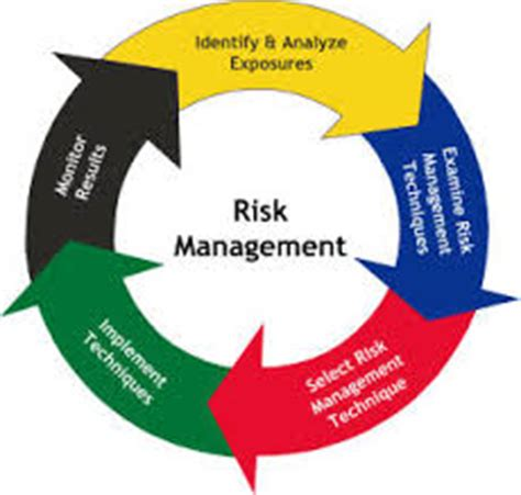 Journal of Risk and Financial Management An Open - MDPI